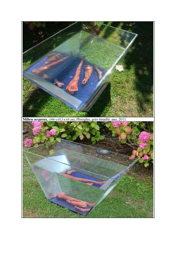 Milieu acqueux, plexiglas, grès émaillé, eau, 100 x 65.5 x 65 cm, 2011.